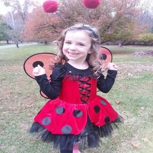 Ladybug Red Polka Dot Tulle Tutu Halloween Costume
